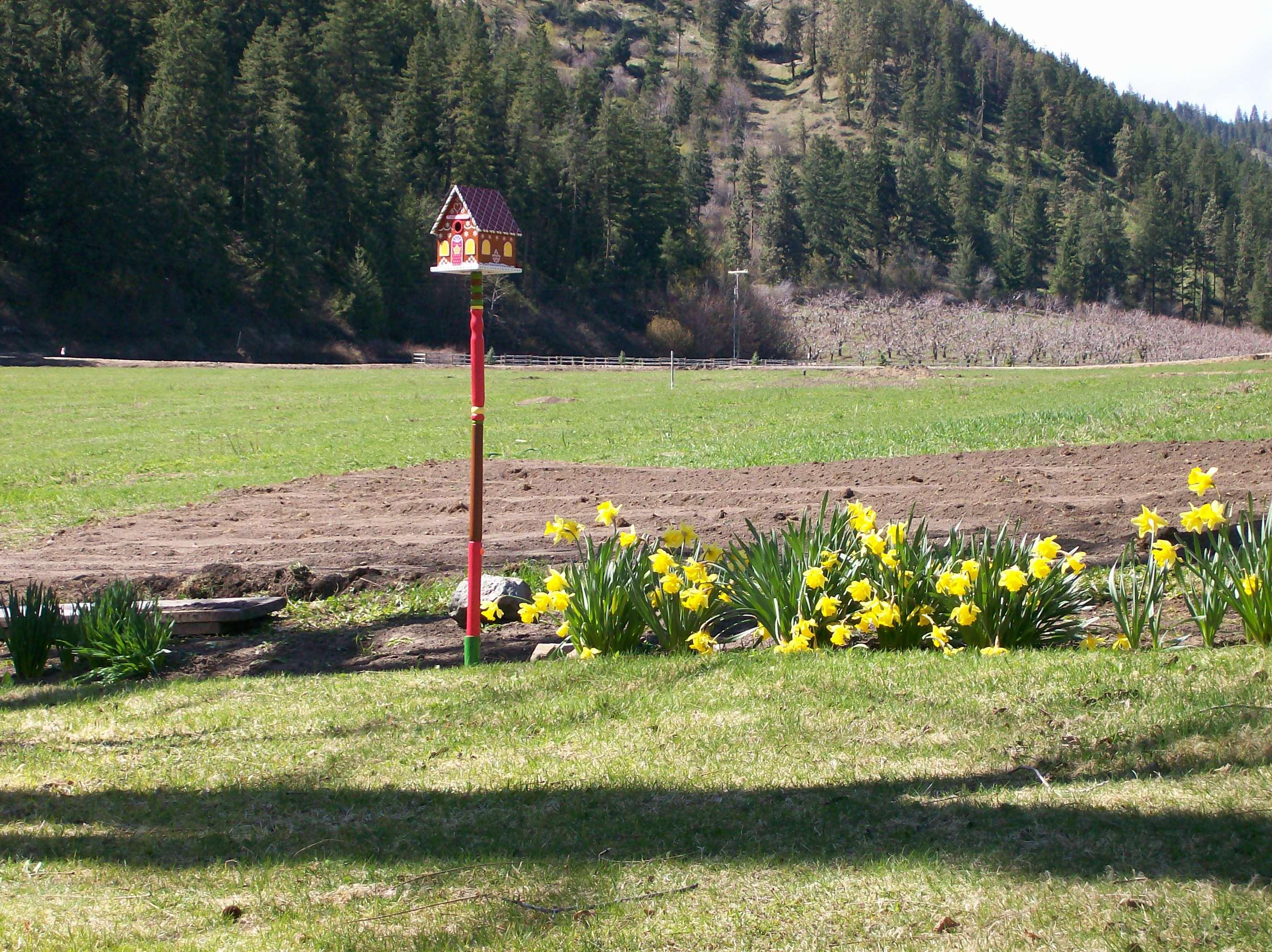 Lia & Leo grave in Spring 07.JPG