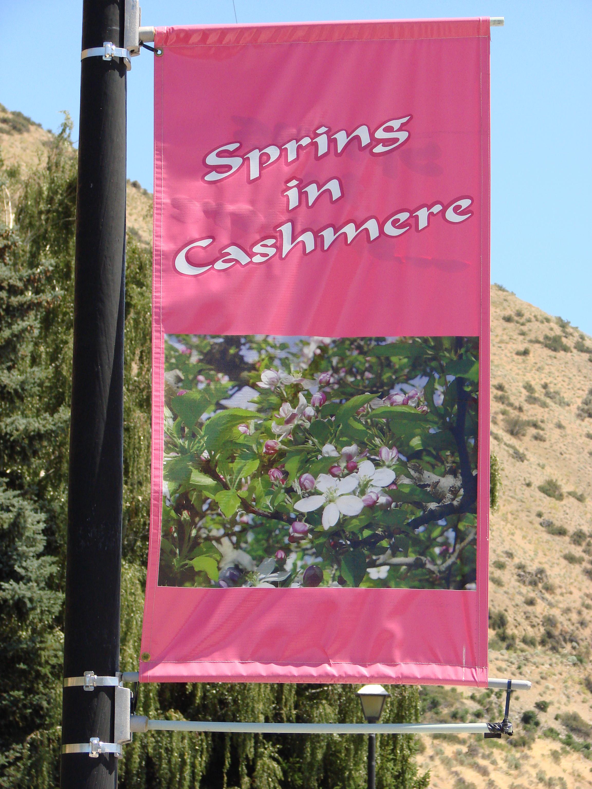 Spring sign.JPG