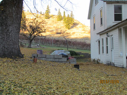 Fall 2013 at the farm leaf cleaning (2).JPG