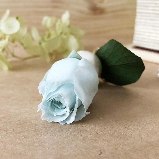 Elpatia「Rose Snow」