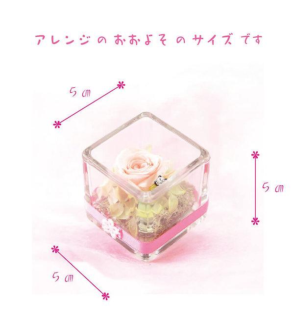 母の日ギフト Cube ミルキーピンクサイズ