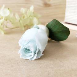 Rose Snow(片耳ピアス・イヤリング)