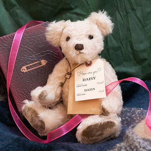 魔法のテディベア【DAISY】- Original Teddy Bear - 限定1点