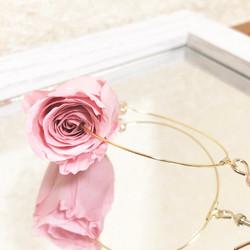 朝露の薔薇
