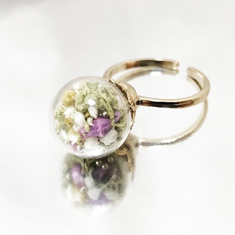 紫苑の野原