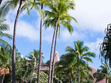 ハワイらしい景色を探して