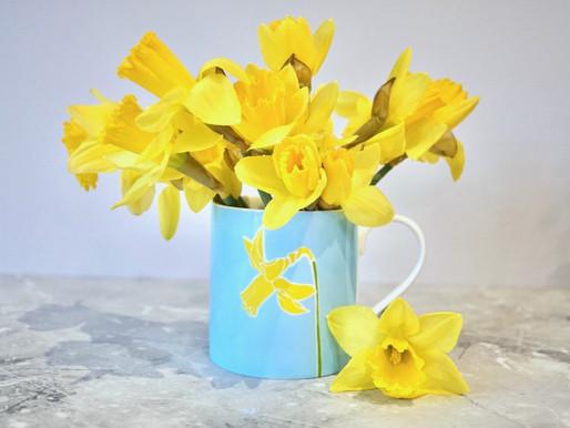 Grow flowers to match Charlotte Noar mugs - guest post