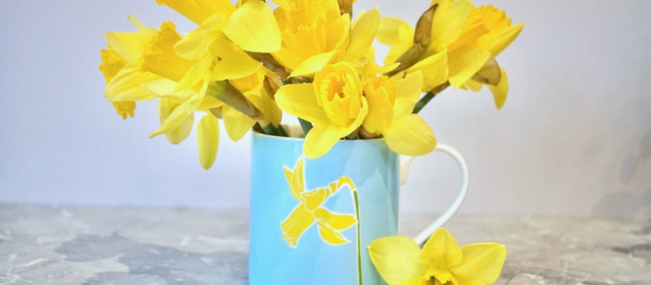 Grow flowers to match Charlotte Noar mugs - guest post