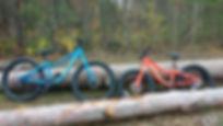 Timber 20 et 24 promo1.jpg