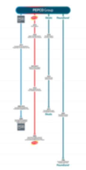 Pepco_Group_Timeline_v5_1500px.jpg
