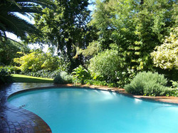 Olivewoods Pool