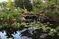 Scenic Water Garden