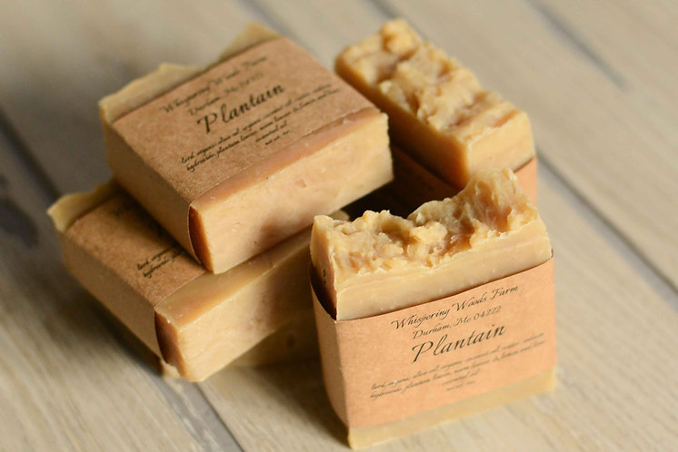 Plantain Bar Soap (Pack of 2)