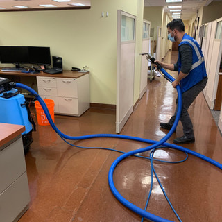 Upholstery Cleaning 100 Cleaners
