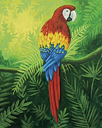 Mr. Macaw Canvas