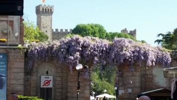 Este Museum tower flowers.jpg