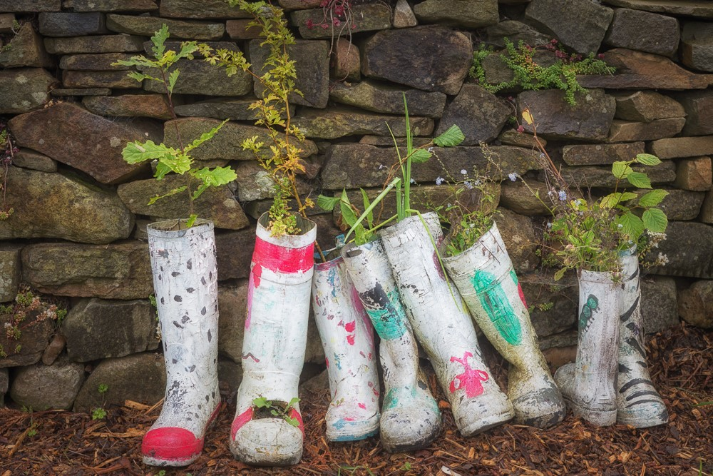 wellies on display - August 15.jpg