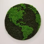 Moss Earth Globe.jpg