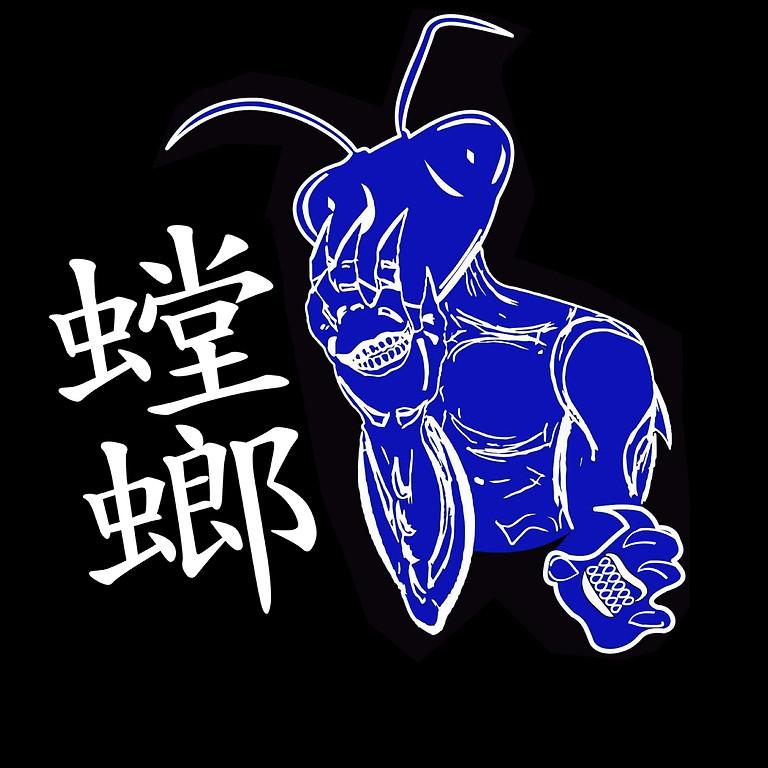 Blue Mantis Qi Gung Seminar