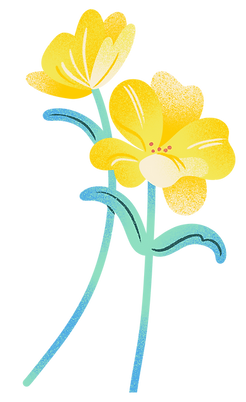 3 Yellow Flowers.png