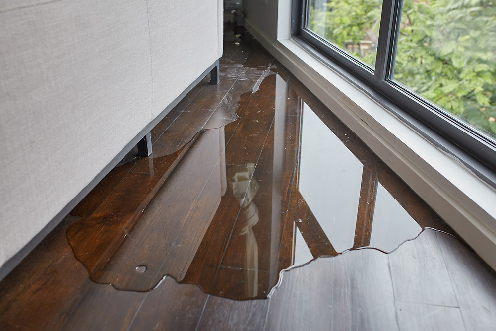 Water vs Wind Damage - What You Need To Know