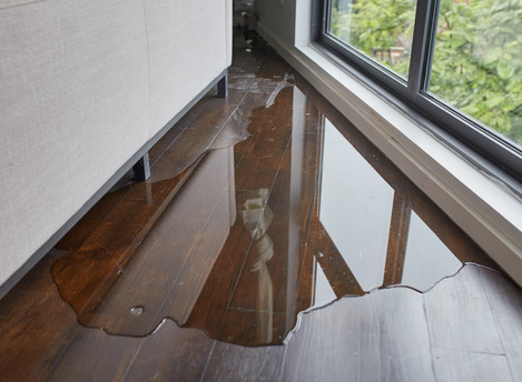 Water Damage vs Wind Damage - Need To Know