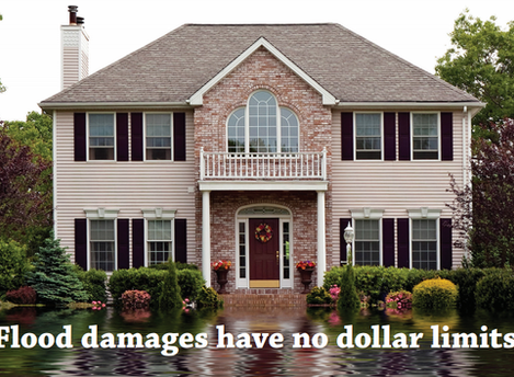 Excess Flood Insurance - Could You?