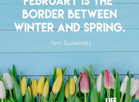 Goodbye February, Hello Spring