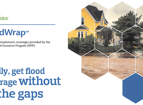 Fill the Flood Insurance Gaps