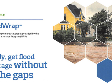 Fill the Flood Insurance Gaps