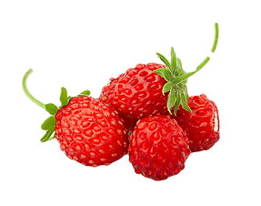 Wild-Straberry-for-way_edited_edited.png