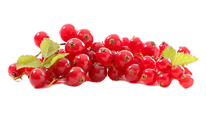 Red-Currant-for-way_edited.png