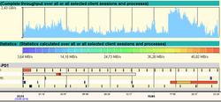 Detailed Throughput Chart