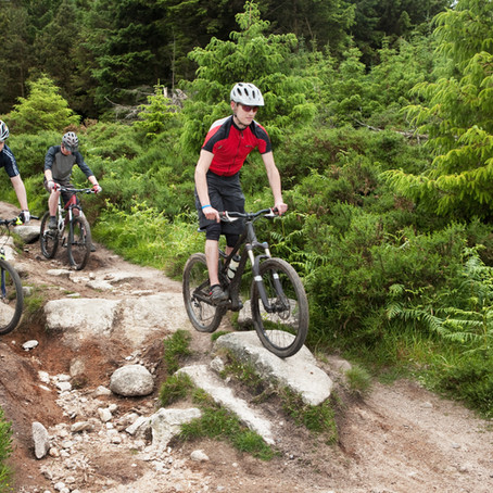 The Appeal of Mountain Biking