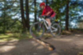 Paul Mountain Biking Book-3 SMALL.jpg