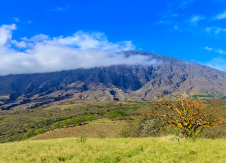 The Slopes of Haleakala