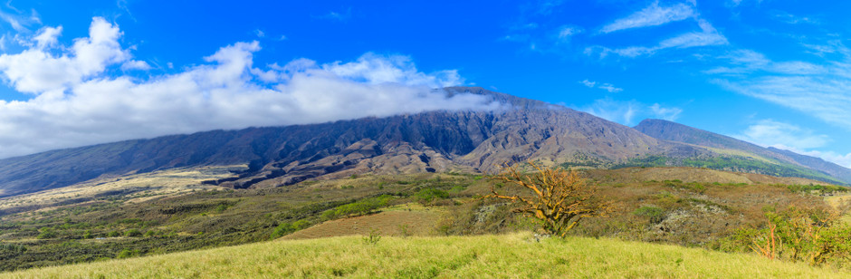 The Slopes of Haleakala
