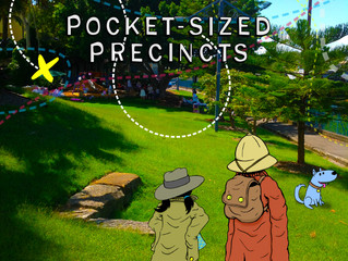 Pocket-Sized Precincts