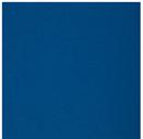 Basic Blue.PNG