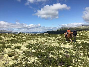 Ridning i Rondane.jpg
