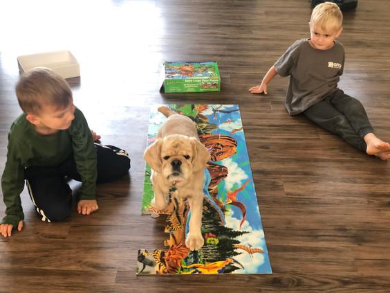 Puzzletime (Eevee, Drew & Reid)