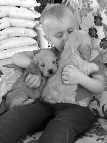 Reid loves to hold and snuggle with our puppies.  Not sure there's anything cuter than this. 😉
