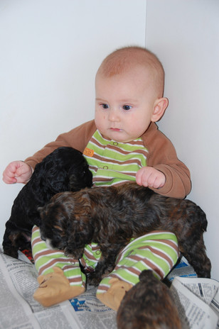 Starting Drew's love for puppies early.
