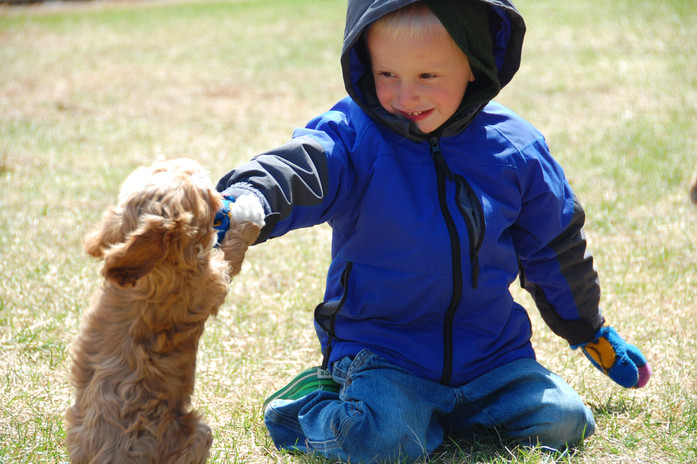 Devin playing with a puppy on a cool and breezy day.  All smiles.
