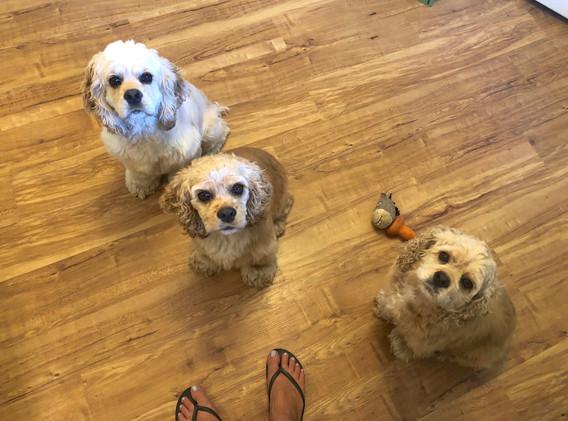 Noel and her sisters