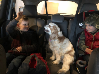 """""""Sit"""".  Drew wanted to make sure all were buckled in and sitting nicely before heading out.  Starla was a very good listener, eager to get on our way."""