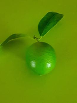 home-grown lime!