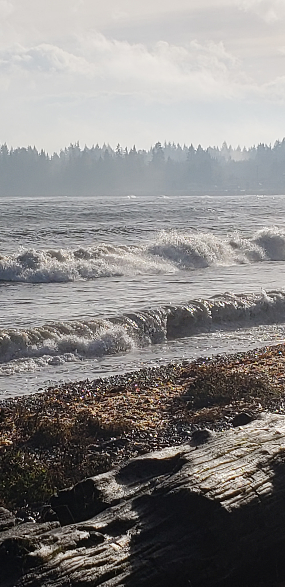a photo of a beach with waves and sand and its a very nice windy day