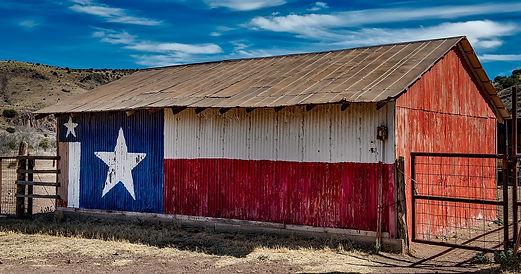 TX Regionalism.jpg