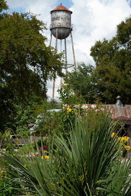 Gruene Water Tower.png